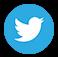 Twitter icone