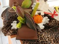Notre actualit vente de drag es et de chocolats sur for Salon rochepinard tours