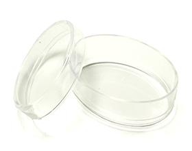 Petite boite plexiglas ovale contenant à dragées